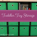 Toddler Toy Storage