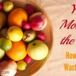 Your Money in the Trash: How to Stop Wasting Food (Part 1)