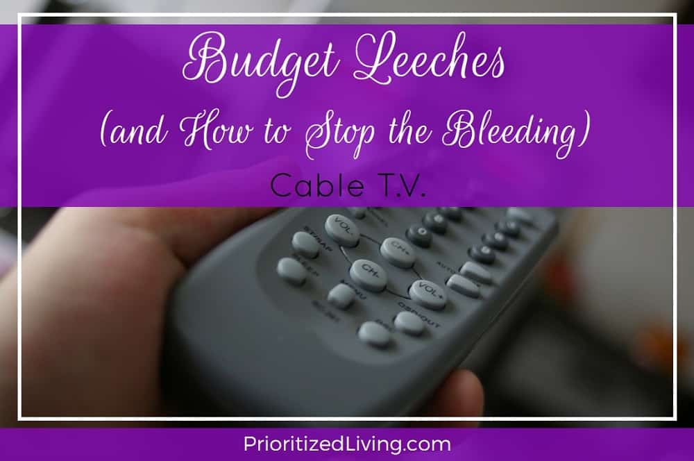 Budget Leeches and How to Stop the Bleeding - Cable TV