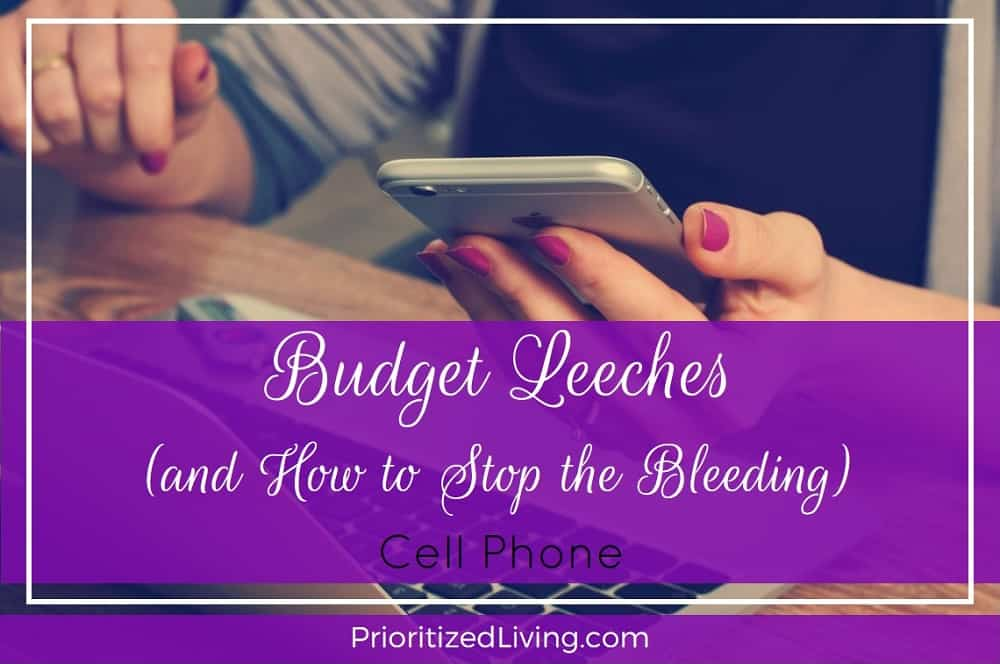 Budget Leeches and How to Stop the Bleeding - Cell Phone