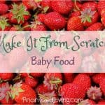 Make It From Scratch:  Baby Food