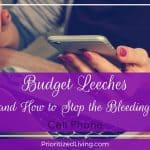 Budget Leeches (and How to Stop the Bleeding):  Cell Phone