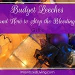 Budget Leeches (and How to Stop the Bleeding):  Gifts