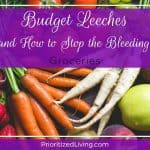 Budget Leeches (and How to Stop the Bleeding):  Groceries