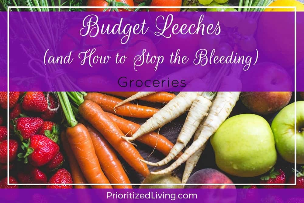 Budget Leeches and How to Stop the Bleeding - Groceries